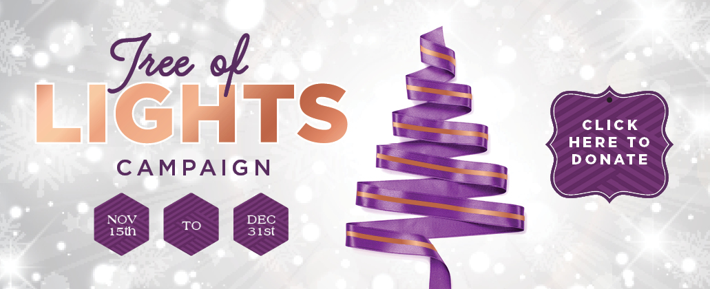 Donate to the 31st Tree of Lights Campaign