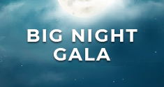 Big Night Gala